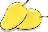 vector cartoon, illustration of two yellow mangoes