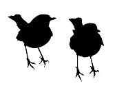 Two Robins - Shape Vectors