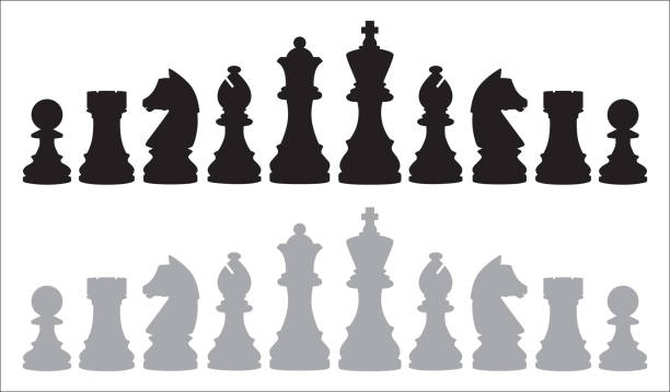 Two Rows Of Chess Pieces Vector illustration of two rows of chess pieces on a white background. chess knight silhouette stock illustrations