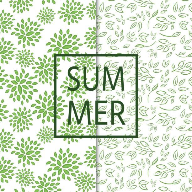 Zwei nahtlose und frische Muster mit Zweigen, Blättern – Vektorgrafik