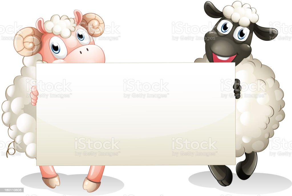 Two sheeps holding an empty banner royalty-free two sheeps holding an empty banner stock vector art & more images of advertisement