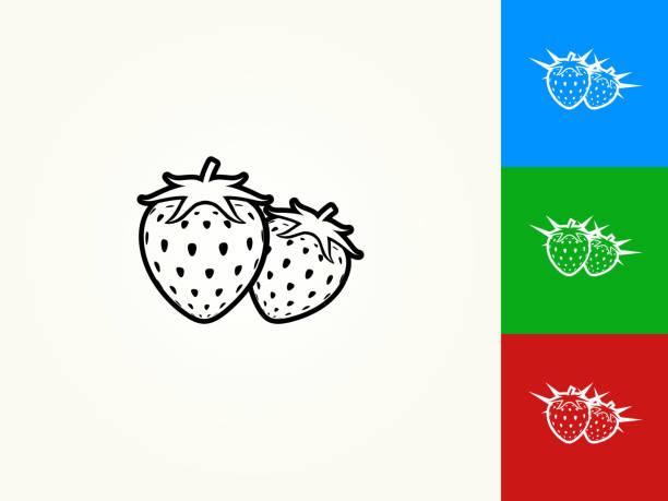 illustrations, cliparts, dessins animés et icônes de deux fraises noir avc icône linéaire - fraise