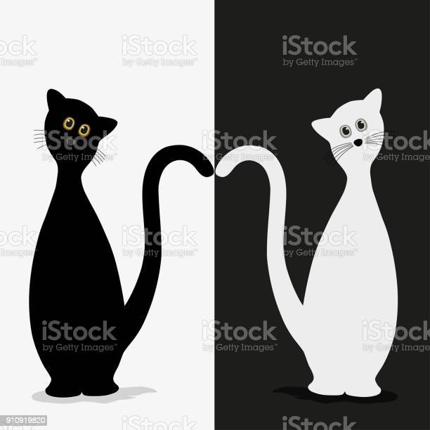Two stylized silhouette of black and white cats vector id910919820?b=1&k=6&m=910919820&s=612x612&h=oph8honyect1k2qzm9rfii olefsqwnjnbfqfyvuei4=