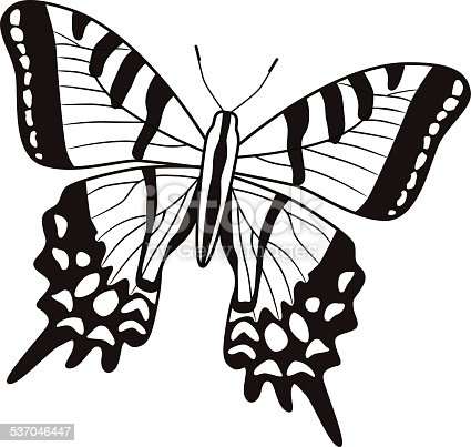 A vector illustration of a two tailed swallowtail North American butterfly in black and white. An EPS file and a large jpg are included in this download.