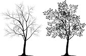 Illustration of tree silhouette. The archive consist of  EPS, PDF, SVG and hi-resolution JPG formats