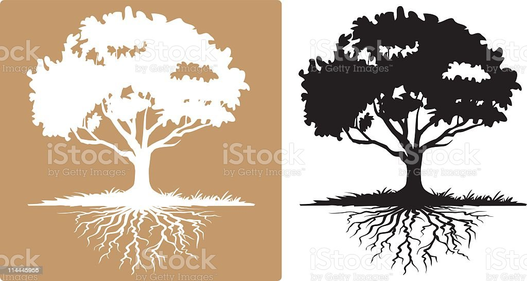 Two Tree with Visible Roots White and Black Silhouettes vector art illustration