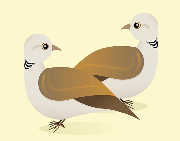 Two Turtle Doves vector art illustration