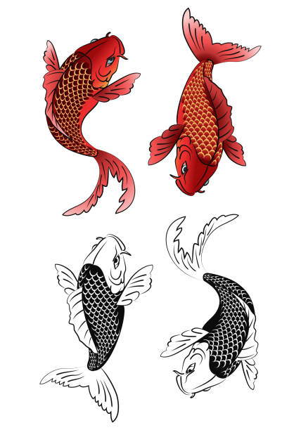 Royalty Free Silhouette Of Koi Fish Tattoo Black And White Clip Art