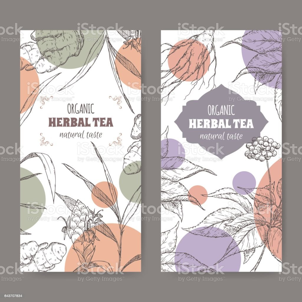 Two vector herbal tea labels with ginger and ginseng sketch. vector art illustration