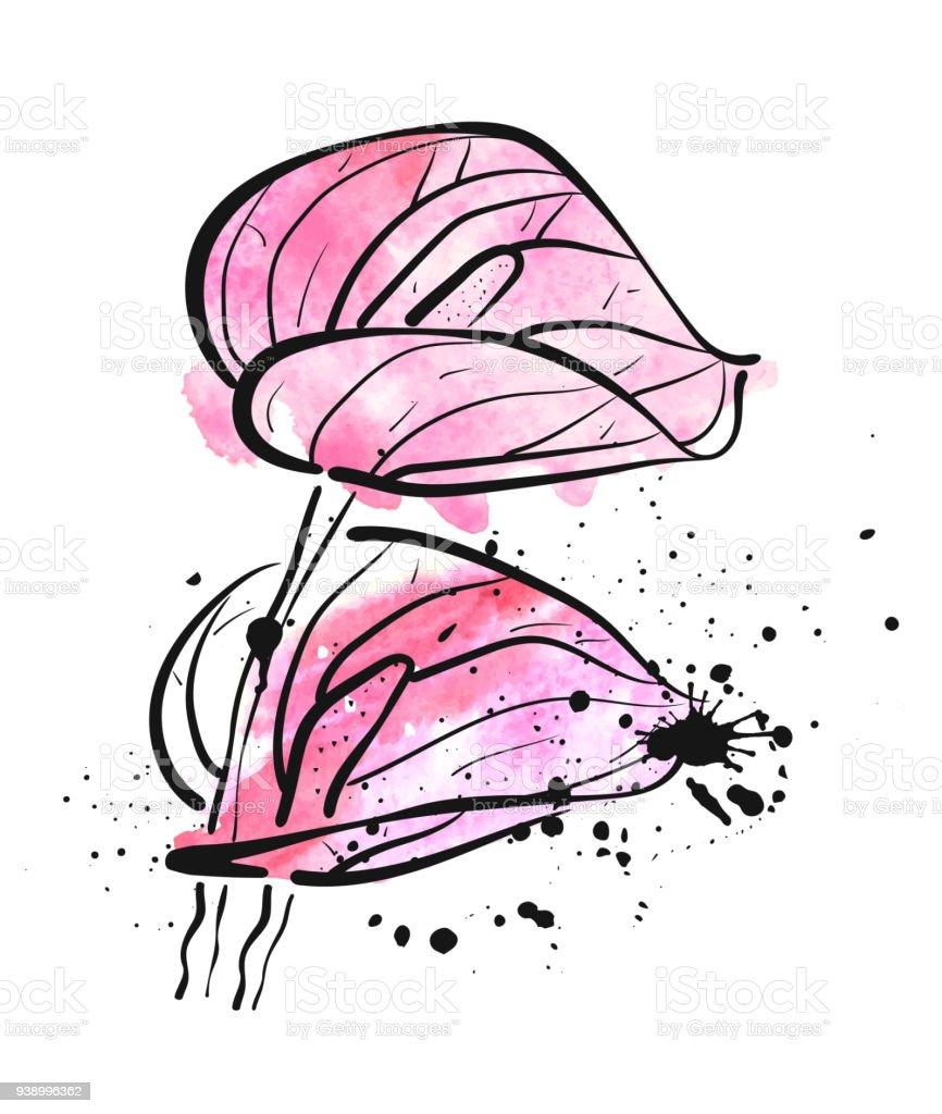 Deux fleurs de Lys Calla aquarelles roses sur fond blanc - Illustration vectorielle