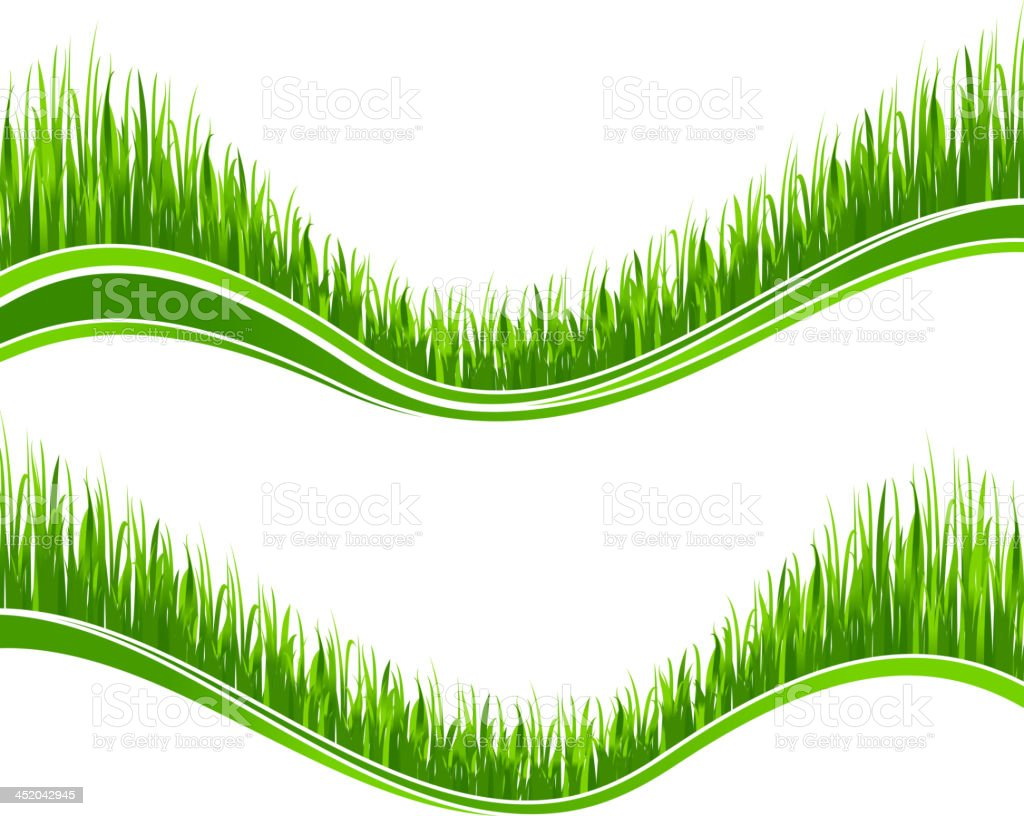 Two waves of green grass royalty-free stock vector art