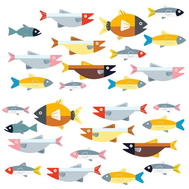 ilustrações de stock, clip art, desenhos animados e ícones de two way traffic - peixe