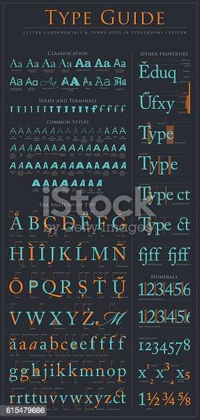 istock Type anatomy guide 615479666