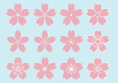 12 type of Cherry Blossom flower design