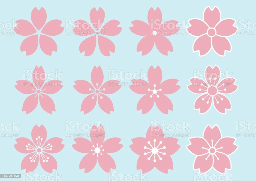 12 type of Cherry Blossom flower design vector art illustration