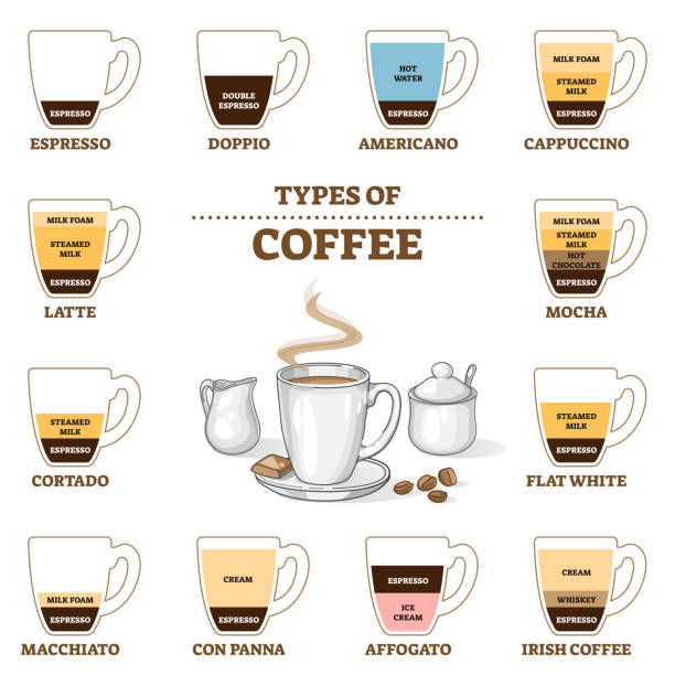 Types of coffee and cafe preparation and proportion guide outline diagram vector art illustration
