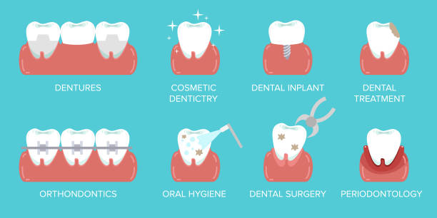 types of dental clinic services. stomatology and dental procedures flat icons. toothcare vector illustration. flat design style modern vector illustration concept. - orthodontist stock illustrations, clip art, cartoons, & icons