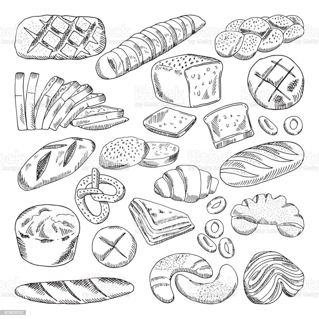 Tipos de alimentos de panadería saludable. Croissant y pan fresco. Imágenes de vector dibujado a mano - ilustración de arte vectorial