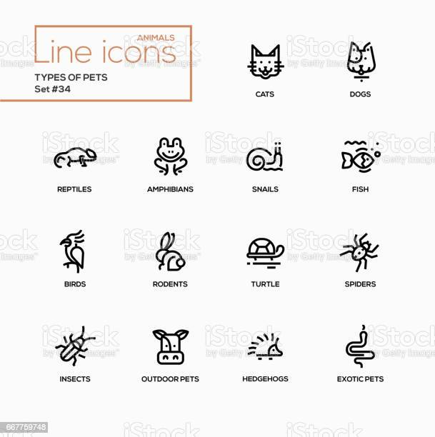 Types of pets modern vector single line icons set vector id667759748?b=1&k=6&m=667759748&s=612x612&h=zfd7hdadnffcebuewi0rxfbacbnxnunc8edjwqs qju=