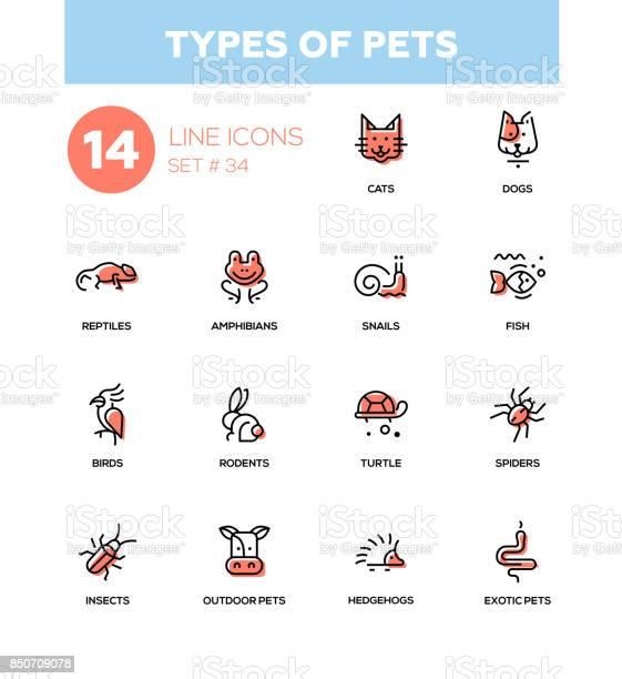 Types of pets modern vector single line icons set vector id850709078?b=1&k=6&m=850709078&s=612x612&h=omuoydjp6gkortherqlmpw86mcbbf0re57x1a8kn ci=