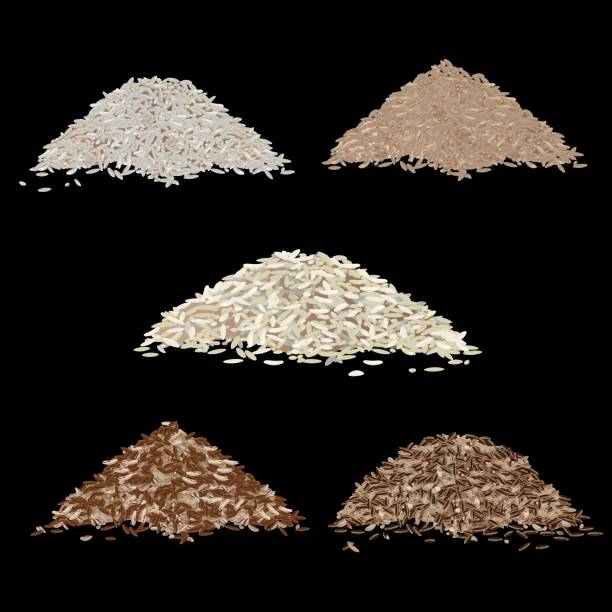 illustrations, cliparts, dessins animés et icônes de types de grains de riz - risotto