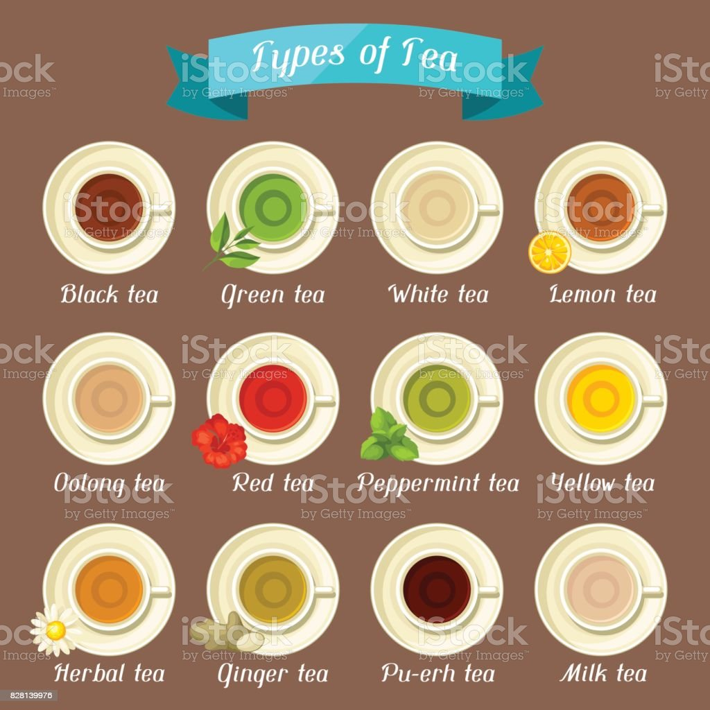 Types of tea. Set of ceramic cups with different tastes and ingredients vector art illustration