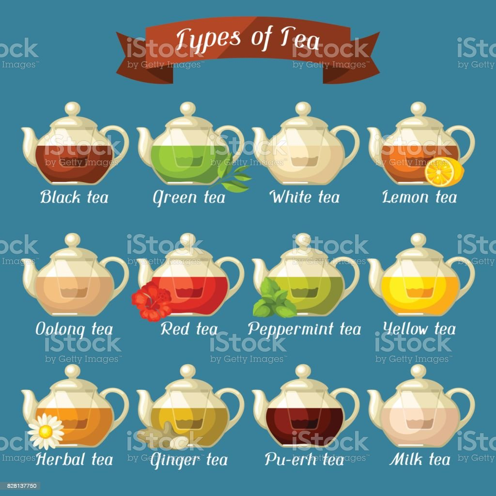Types of tea. Set of glass kettles with different tastes and ingredients vector art illustration