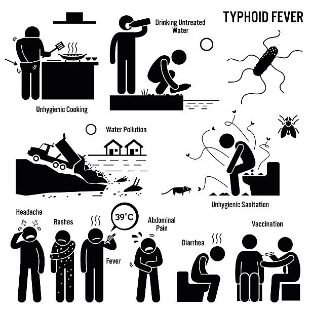 Vector E Sanitary Service : Royalty free typhoid fever clip art vector images