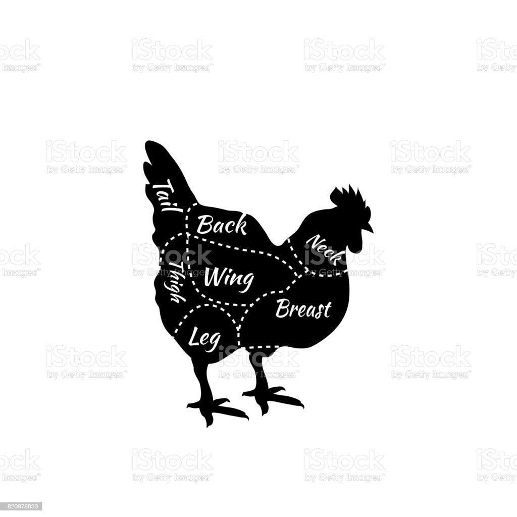 Typographic Chicken Butcher Cuts Diagram vector art illustration