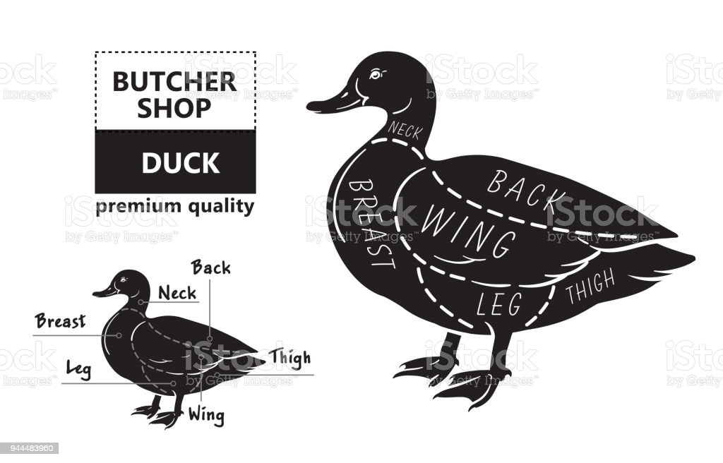 Duck Cuts Diagram Example Electrical Circuit