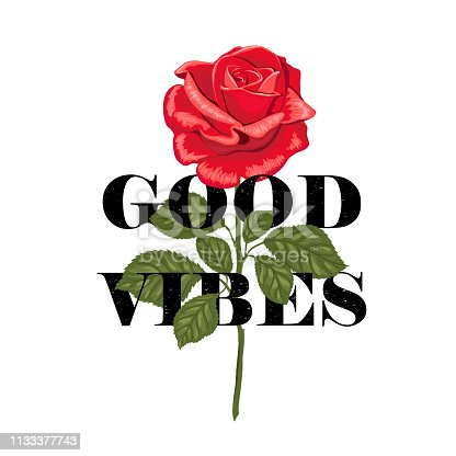 Typography slogan Good vibes in flower rose. Vector illustration for t-shirts.