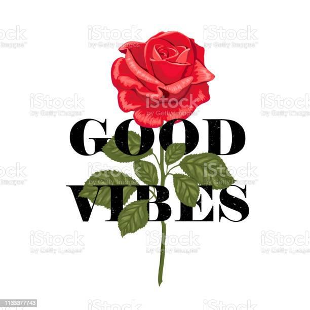 Typography slogan good vibes in flower rose vector id1133377743?b=1&k=6&m=1133377743&s=612x612&h=d91snerocy09djxylsrmrquybfedhr5peaa1n3rtlqm=