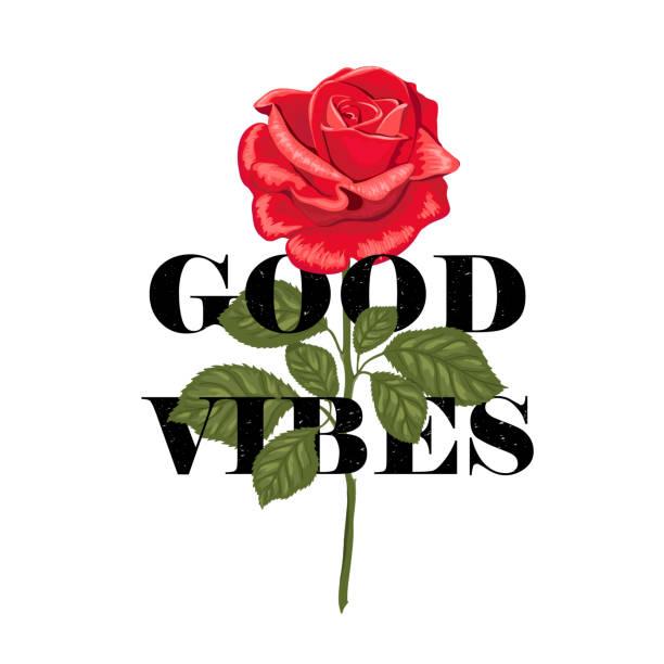 typography slogan good vibes in flower rose. - plant stem stock illustrations