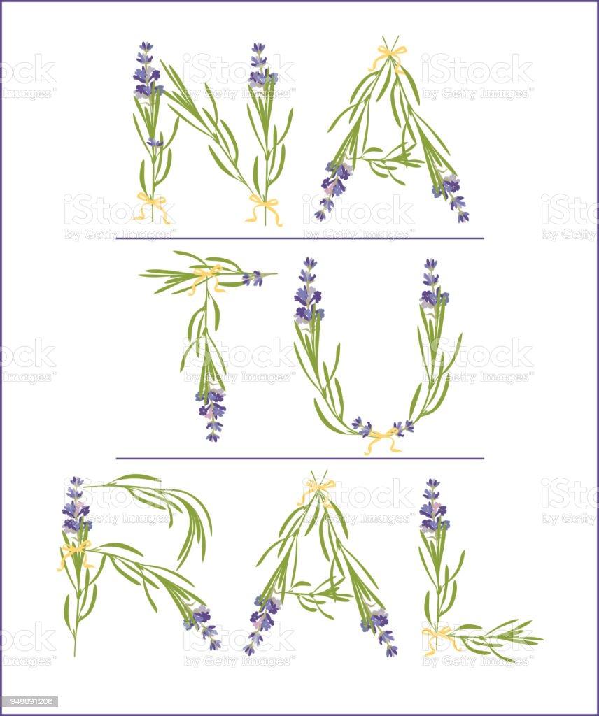 Ilustración de Lema De Tipografía Con Texto De Flor De Lavanda ...