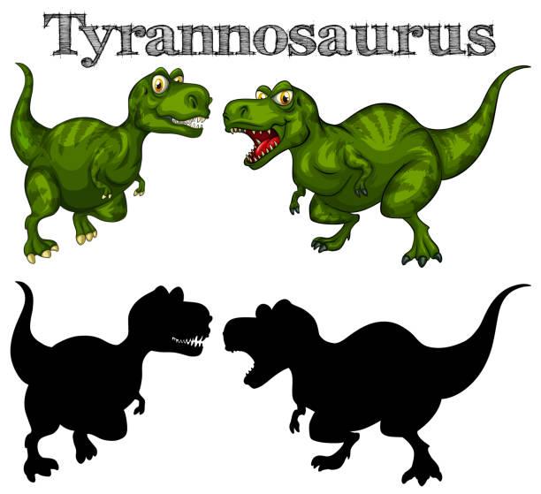 tyrannosaurus und silhouette auf weißem hintergrund - eiszeit stock-grafiken, -clipart, -cartoons und -symbole