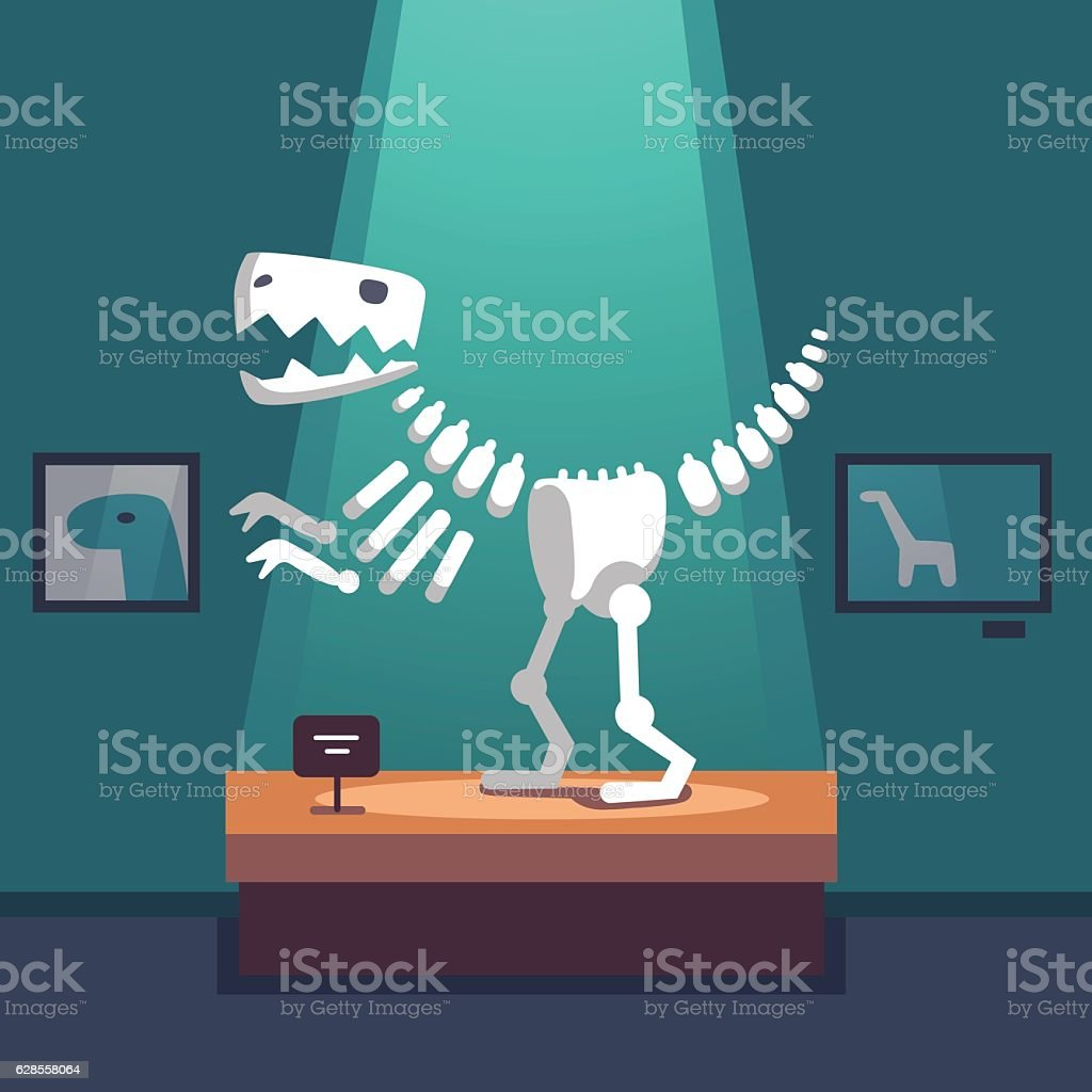 Tyrannosaurus dinosaur skeleton at museum room vector art illustration