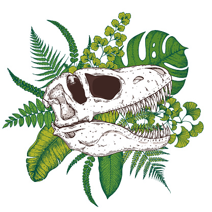Tyrannosaurus rex and palm leaves hand drawn illustration. Tattoo vintage print. Hand drawn floral print. Tattoo design. Jungle print. Tropical illustration.