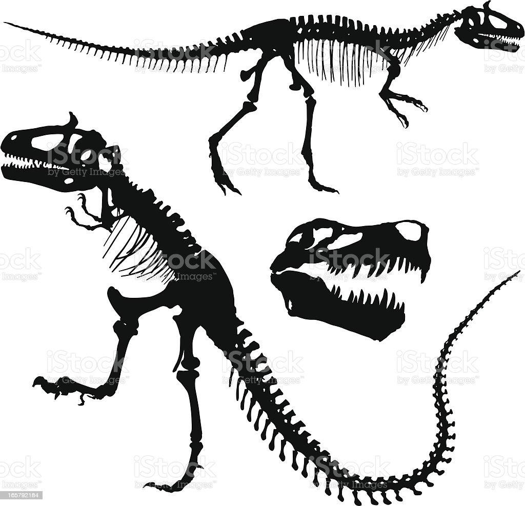 Tyrannosaurus Rex vector art illustration