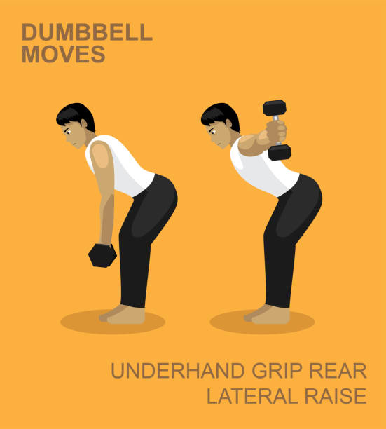 Underhand Grip Rear Lateral Raise Dumbbell Moves Manga Gym Set Illustration Dumbbell Moves EPS10 File Format lateral surface stock illustrations