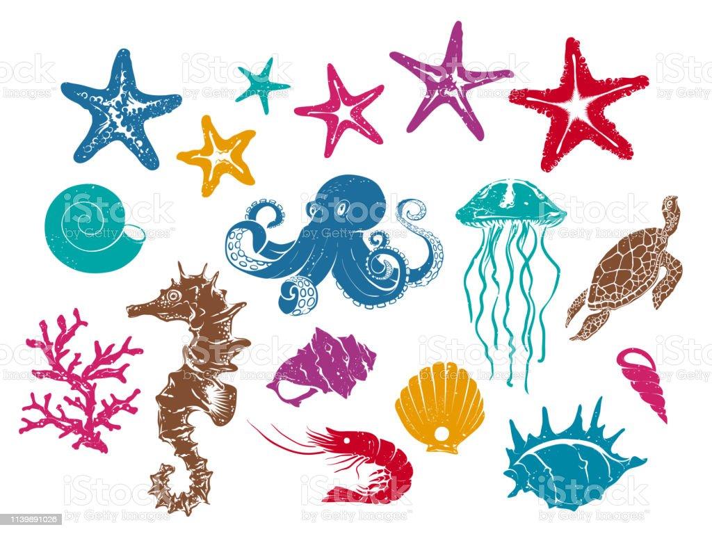 Denizalti Yaratiklar Vektor Cizimler Stok Vektor Sanati Ahtapot