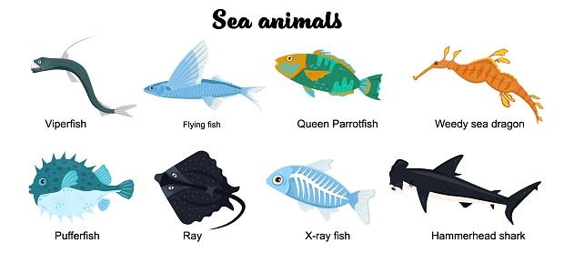 Undersea inhabitants set