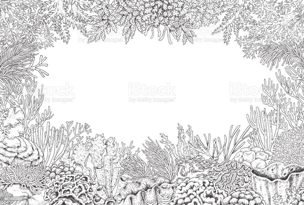 Underwater Background With Corals Vector Art Illustration