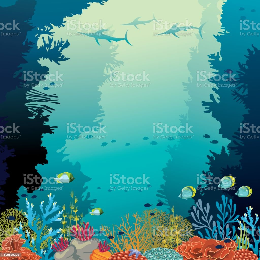 Underwater coral reef, marlines and sea. vector art illustration