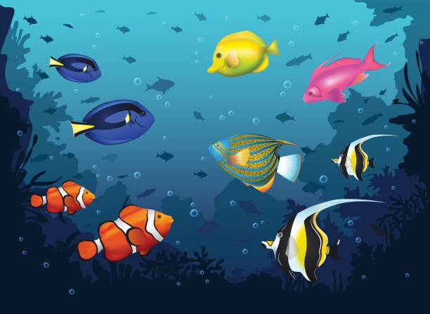 underwater deep sea background with tropical fishes vector art illustration