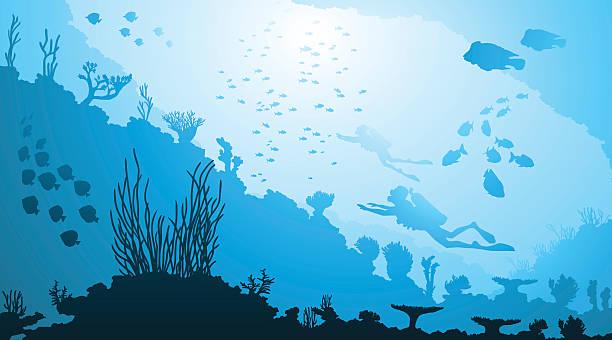 ダイビング、水中の海洋生物 - 水族館点のイラスト素材/クリップアート素材/マンガ素材/アイコン素材