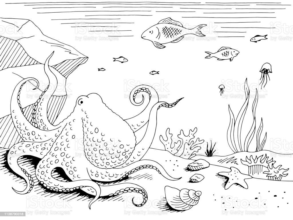 Underwater graphic sea black white sketch illustration vector