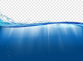Underwater landscape with sunbeams. Water surface. Isolated on a transparent background. Vector illustration.
