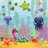 Sea Animals and Algae.