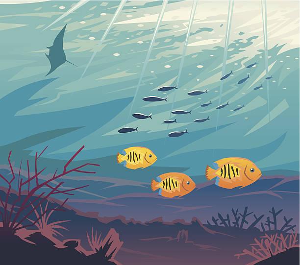 unterwasserwelt leben - schwimmpflanzen stock-grafiken, -clipart, -cartoons und -symbole