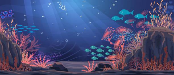 Underwater nature background. Vector Illustration Underwater nature background. Vector Illustration undersea stock illustrations